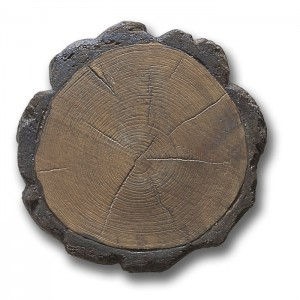 Gryphonn Logstep Stones B
